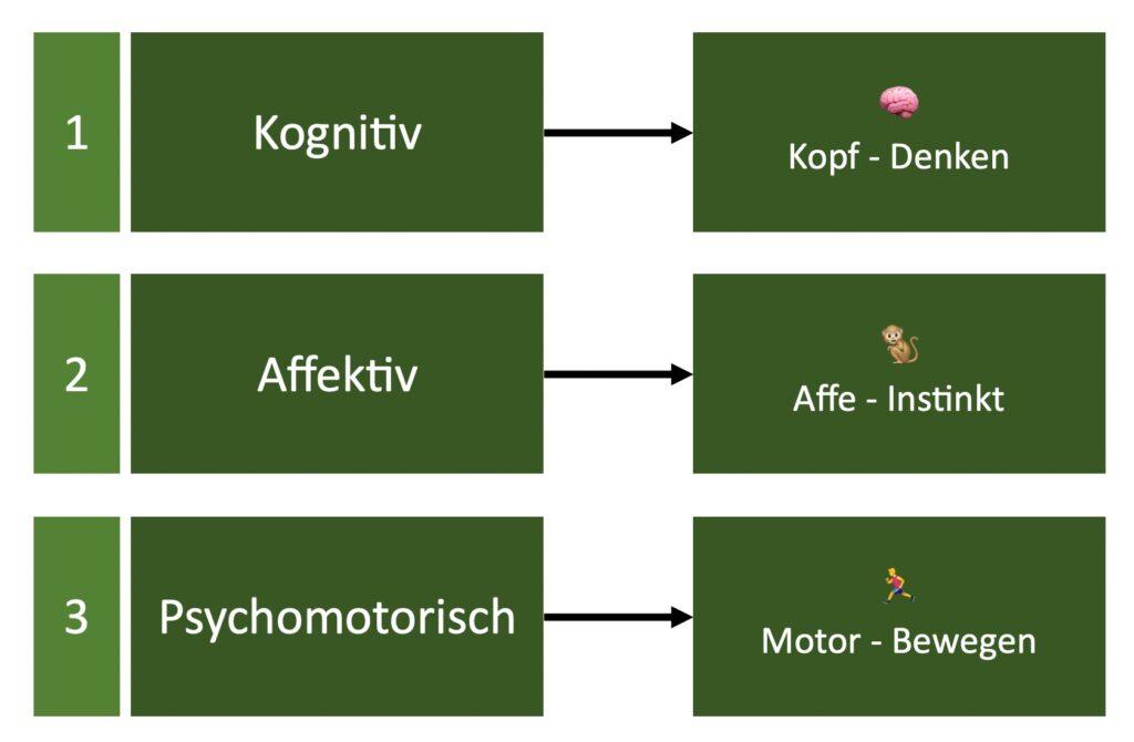 Kognitive Affektive Psychomotorische Lernbereiche